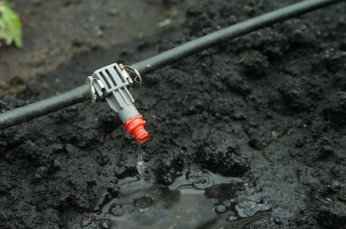 滴灌发射器向土壤中释放出确切量的水和养分