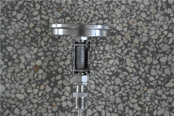 WSS-315双金属温度计